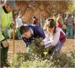 plantando-en-el-parque