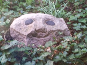 Rostre de Nuria a la pedra de Heerup