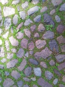 Paviment de pedres i gespa