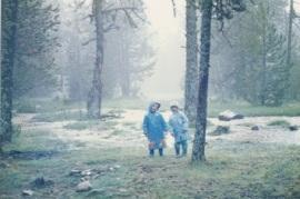 Clara i Jordi bosc encantat
